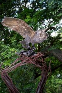 Great Horned Owl 138
